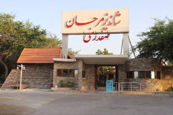 رستوران شاندیز مرجان صفدری کیش